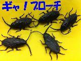 子供服 ※ャ¥88モ※  ゴキちゃん ブローチ