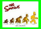 子供服 ◆◆◆♪88RAF ★ポスター★シンプソンズ 進化