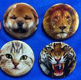 子供服 ◆RF$$ 大きめ!缶バッジ ★タイガー:ネコ:タイガー・柴犬