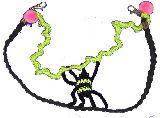 子供服 ◆$TF 手編み 蜘蛛  チョーカーにも腰につけても ホラー